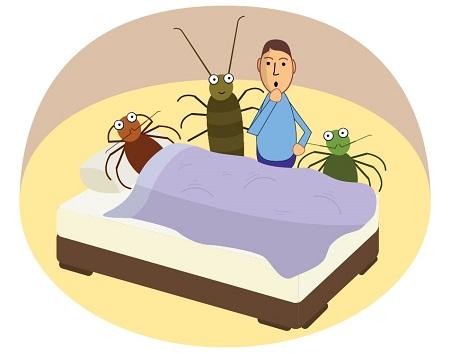secret life mattress