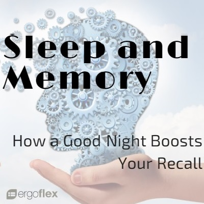 Sleep and Memory - How a Good Night Boosts Your Recall