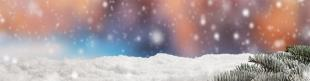 Ergoflex Christmas Gift Guide 2015